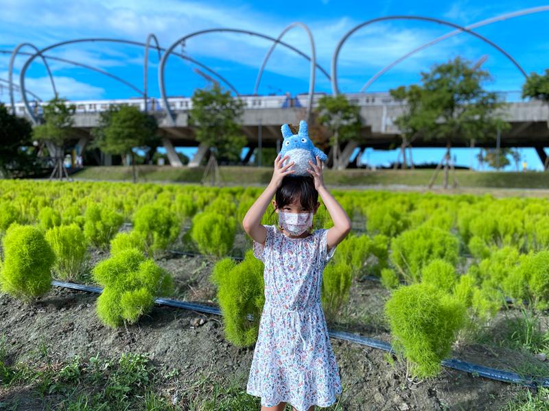 【冬山波波草】新宜蘭景點,一顆顆像極了抹茶小丸子的波波草即將登場!! 台版羊角村、夢幻彩虹屋、碗公溜滑梯、電動小船一次玩個夠 @紫色微笑 Ben&Jean 饗樂生活