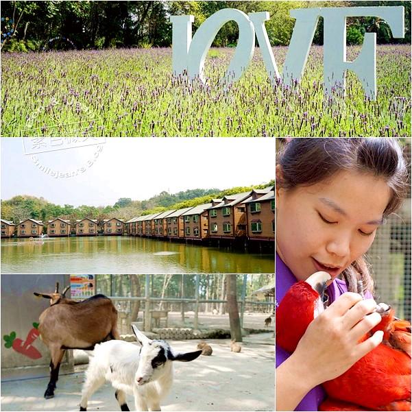 台南景點▋南元花園休閒農場(下)媲美專業鳥園精采又有趣 @紫色微笑 Ben&Jean 饗樂生活