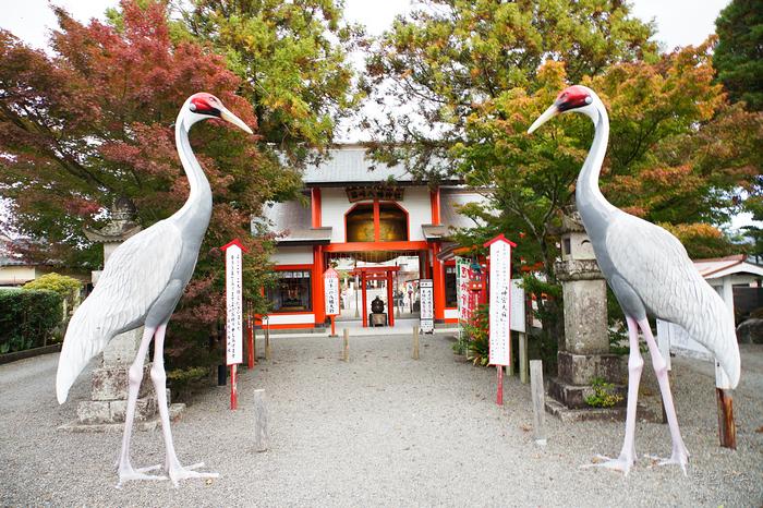 箱崎八幡神社.鹿兒島縣景點~以鶴為名的神社,擁有日本第一大鈴與第一小鈴的神社,超好拍超好玩 @紫色微笑 Ben&Jean 饗樂生活